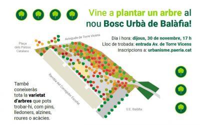 Vine a plantar un arbre al nou Bosc Urbà de Balàfia!